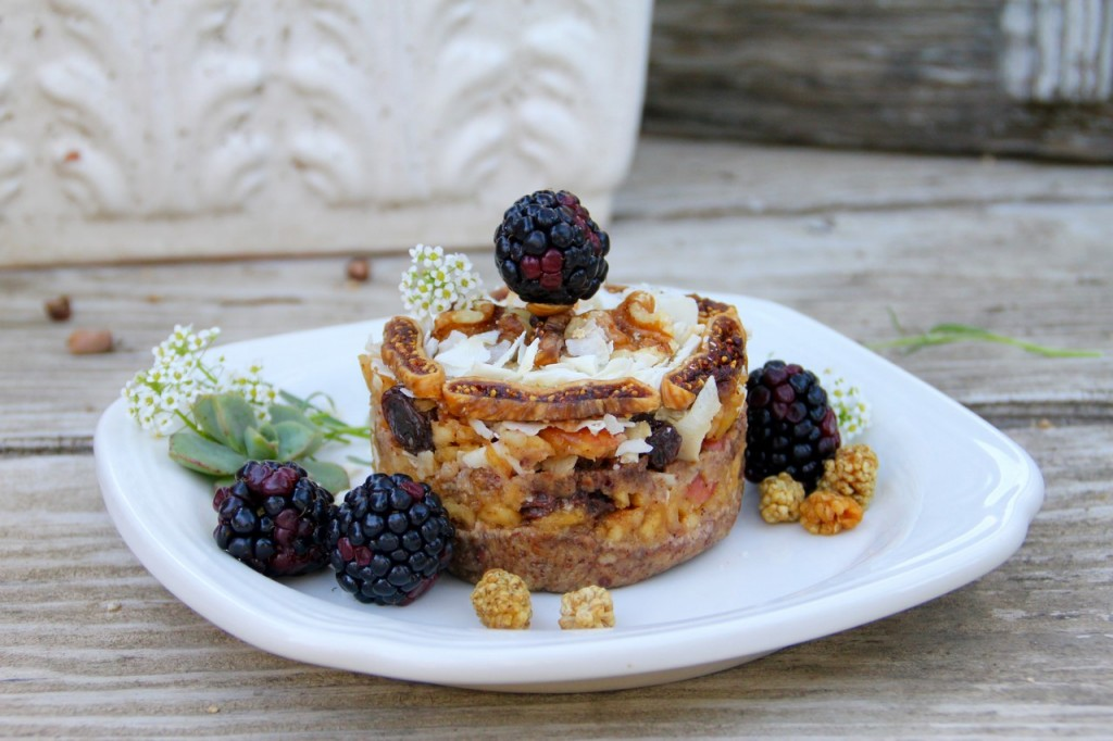 Raw Apple Strudel – Grain & Gluten Free
