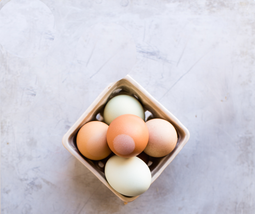 avocado egg boats