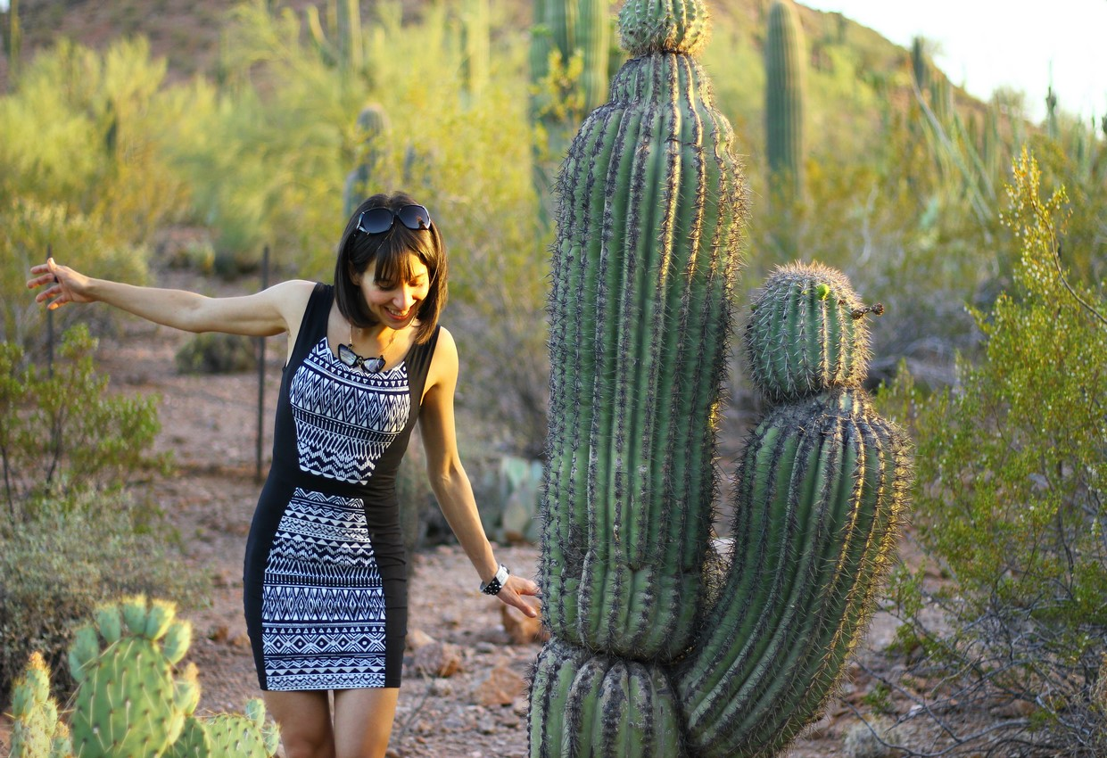 Ambra Botanical Garden in Phoenix
