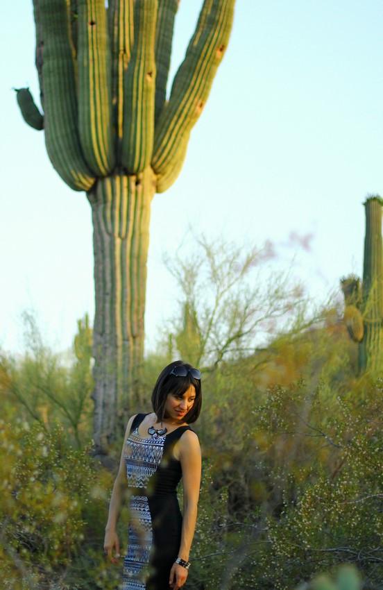 Ambra Desert Botanical Garden