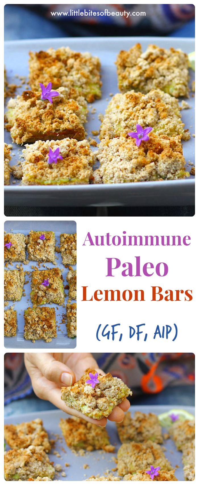 Autoimmune Paleo Lemon Bars (GF, DF, AIP)