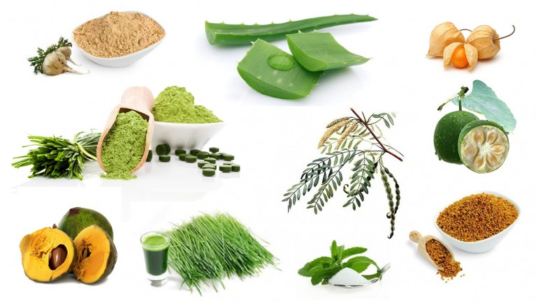 The 10 Superfoods Not Allowed on the AIP!