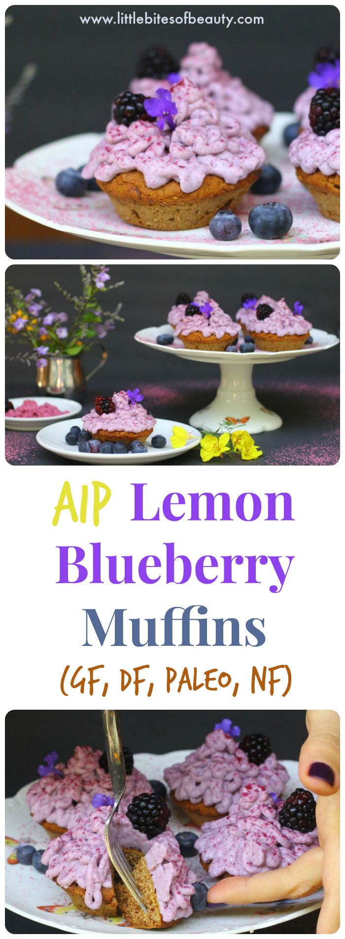 AIP Lemon Blueberry Muffins (GF, DF, Paleo, NF)