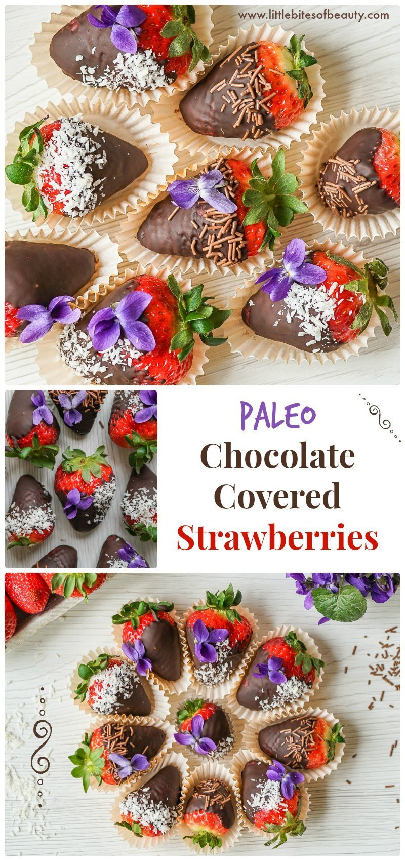 Easy Paleo Chocolate Covered Strawberries (GF & DF)