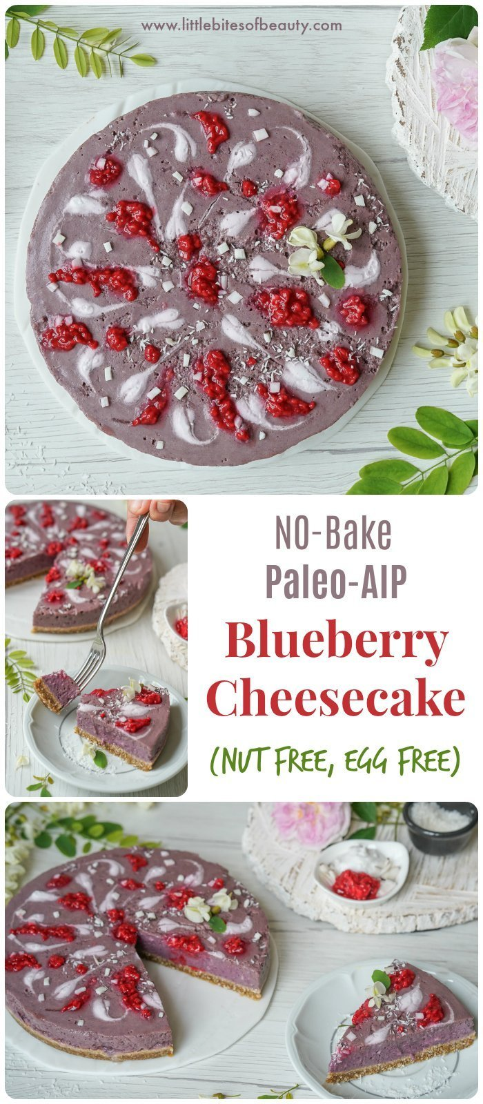 Paleo AIP Blueberry Cheesecake (Nut Free, Egg Free)